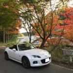 夫は週末ロードスターで加茂広域農道をドライブしていました。(紅葉具合もついでに報告)